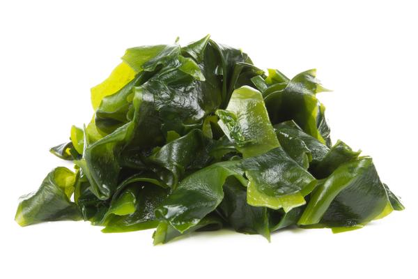 Algae lime