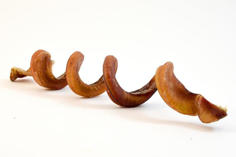 Ochsenziemer-Spirale