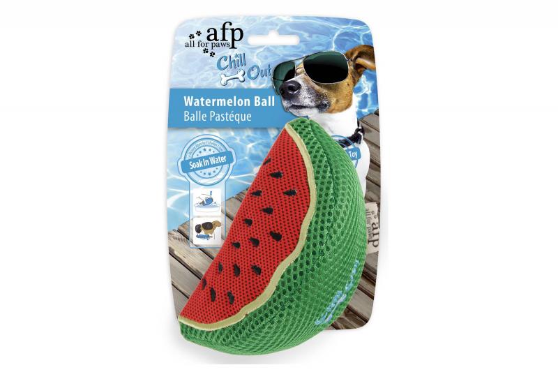 Wasserspielzeug mit Schwamm - Melone
