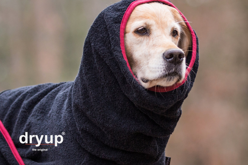 DRYUP Cape – Hundebademantel (schwarz)