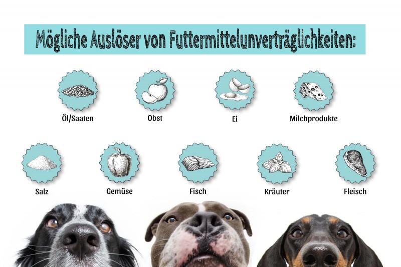 Fresco Barf-Check I Futtermittelunverträglichkeitstest
