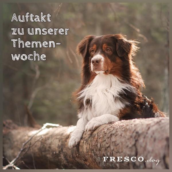 23_Themenwoche-Hirsch-Ank-ndigung